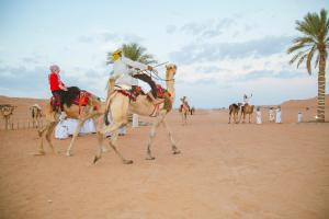 Sama al Wasil Desert Camp, Kempingy  Shāhiq - big - 13