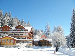 Parkhotel Sole Paradiso - Hotel - San Candido