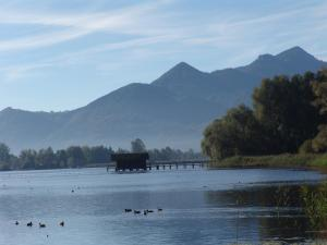 Zum Fischer am See, Penzióny  Prien am Chiemsee - big - 24