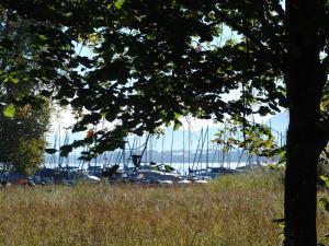 Zum Fischer am See, Penzióny  Prien am Chiemsee - big - 23