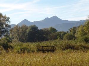 Zum Fischer am See, Penzióny  Prien am Chiemsee - big - 22