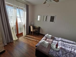 Apartament prywatny Lazurowy