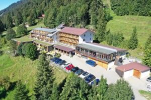 Bio-Berghotel Ifenblick - Hotel - Balderschwang