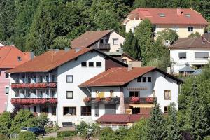 Aparthotel Schwarzwald Panorama - Calmbach