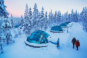 Kakslauttanen Arctic Resort (11 of 123)