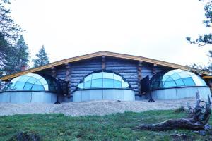 Kakslauttanen Arctic Resort (8 of 123)