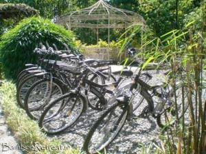 Bamboo Retreat, Отели  Гангток - big - 24