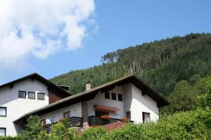 Ferienwohnungen Schwarzwald Panorama - Calmbach
