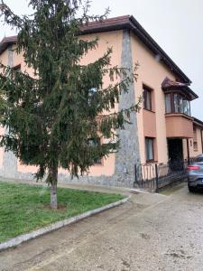 Aless House