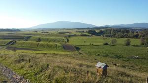 Agroturystyka na Słonecznej Orawie u Dzikich
