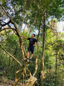 Forest Side ecolodge