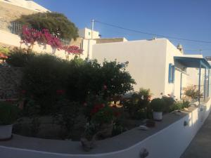 Cycladic houses in rural surrounding 4 Amorgos Greece