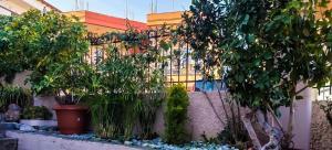 West Garden Achaia Greece
