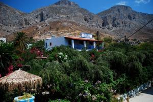 Hostels e Albergues - Harry\'s Paradise