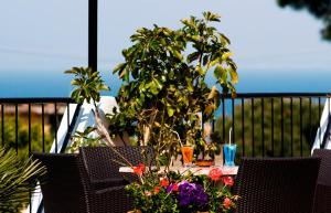 Hotel Casa Di Meglio, Hotely  Ischia - big - 46
