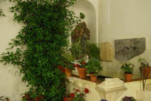 Balcón de Córdoba, Hotely  Córdoba - big - 106