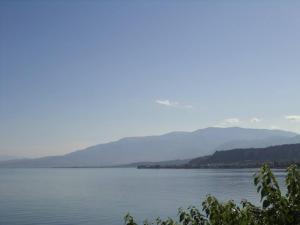 MAXAIRAS HOME ALISSOS,PATRAS Achaia Greece