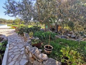 Hvar Mediterranean Ranch House
