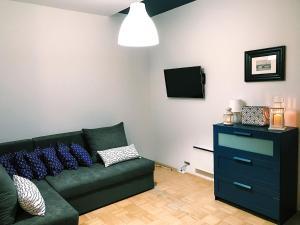 Apartment Apartament Króla Sielaw