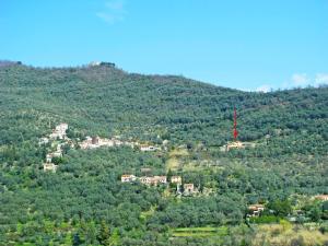 Locazione Turistica Pia - PRE173 - AbcAlberghi.com