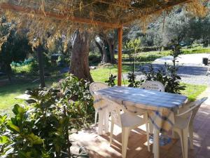Casa tra mare e oliveti