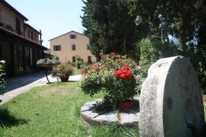 Auberges de jeunesse - Agriturismo La Corte Sul Lago
