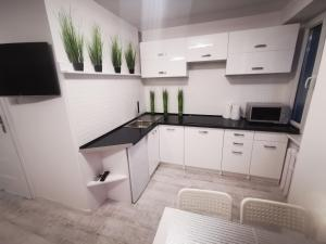 Apartament Green MrągowoMazury290 m od jeziora Rowery