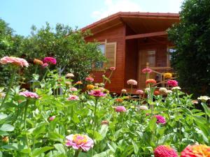 Гостевой дом Ugur Pansiyon Bungalows, Чиралы