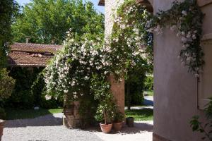 Villino di Porporano (27 of 84)