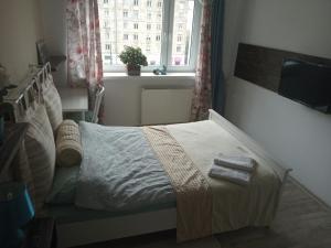 Apartament for you