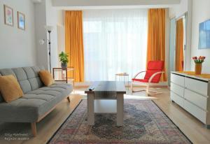 Cozy Apartment Bujorilor Suceava