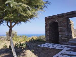 Aegean Vine house with Terrace view Andros Greece