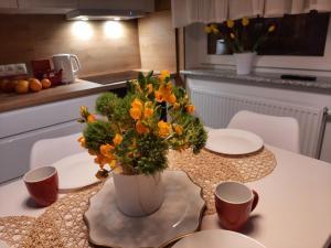 Apartament Amber Comfort