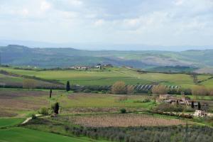 Castello Delle Serre, Bed and breakfasts  Rapolano Terme - big - 34