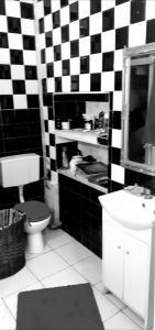 Zamosc apartament Starowka