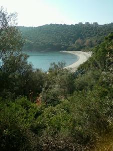 Villa Paradise Ammouliani Greece