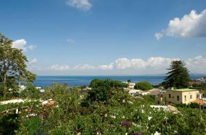 Hotel & Residence Matarese, Hotel  Ischia - big - 84