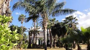 Villa Ponticelli - Carini