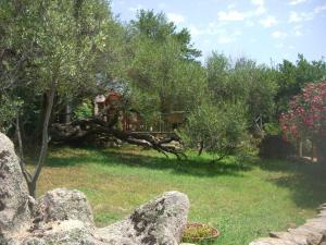 Jaddhu Ristorante Country Resort, Szállodák  Arzachena - big - 69