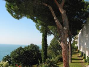 Riviera & Maximilian's Hotel & Spa (14 of 87)