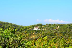 Rizos Veranda - Rooms and Restaurant Alonissos Greece