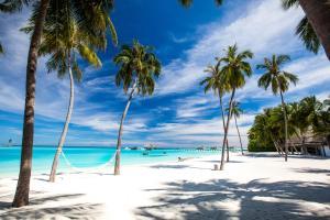 Gili Lankanfushi (7 of 112)