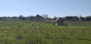 E Berry Farm Slow life home
