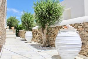 Aegeo Inn Antiparos Greece