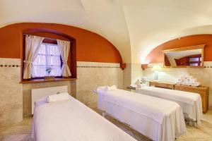 Hotel Hoffmeister & Spa (26 of 42)