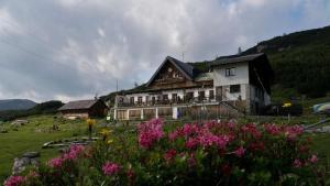 Gjaid-Alm am Dachstein/Krippenstein - Hotel - Obertraun/Dachstein