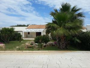 Villa Maxel, Prázdninové domy  San Vito lo Capo - big - 4