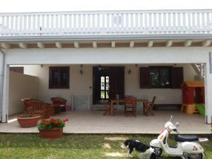 Villa Maxel, Prázdninové domy  San Vito lo Capo - big - 5