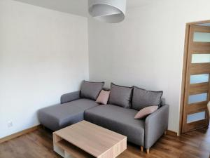 Apartament Tygrysek