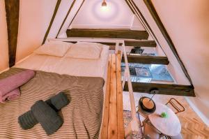 Apartament Bema 8